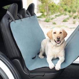 travelling dog Australia