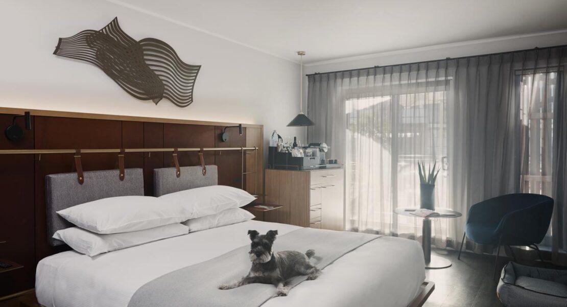 Best Pet-Friendly Accommodation Australia
