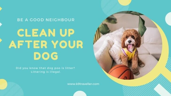 Doggie Doo-Do | Keep Tumbulgum Beautiful