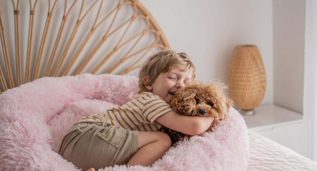 Pupnaps calming dog bed