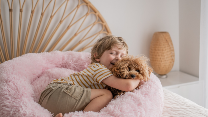 How A Calming Dog Bed Can Help Your Pet Overcome Anxiety