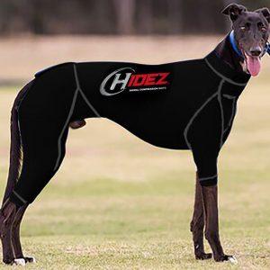 Greyhound Anxiety Suit - Black