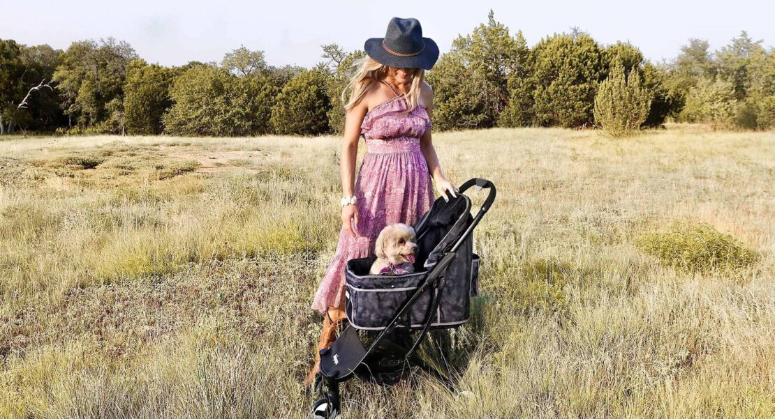 Best Dog Strollers & Carriers 2020